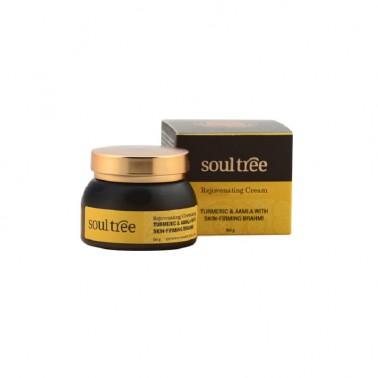 Crema facial regeneradora cúrcuma amla bhraml SoulTree, 60 ml.