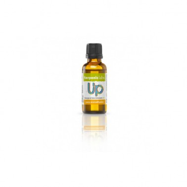 Sinergia UP BIO Terpenic, 30 ml.