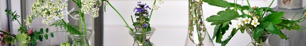 Herbolario - Proser Pharma Mi Tienda Bio