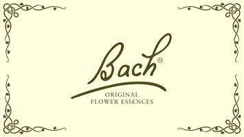 Flores de Bach Originales