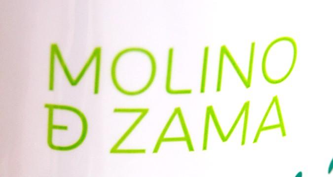 Molino de Zama